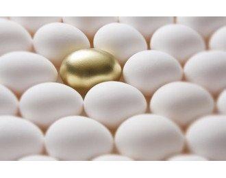 O Mercado das PME's Pode Ser o Seu Trunfo Para o Sucesso